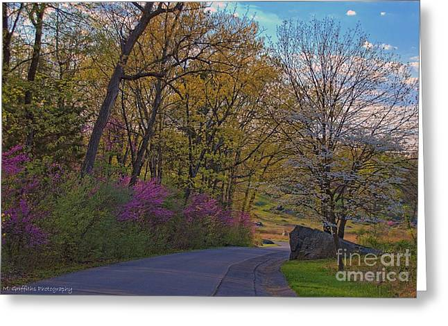Roadway Greeting Cards - Springtime Splendor Greeting Card by Mike Griffiths