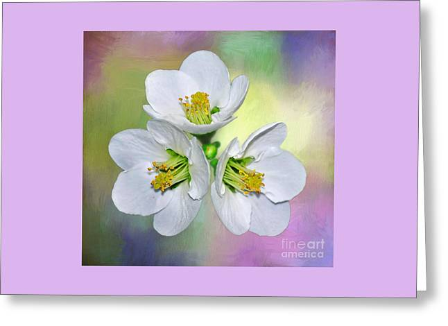 Flower Blossom Greeting Cards - Springtime Triplets by Kaye Menner Greeting Card by Kaye Menner
