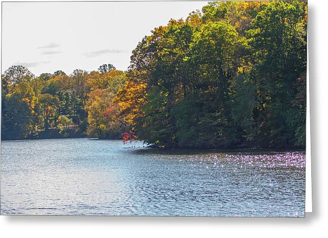 Springton Reservoir In Autumn - Delaware County Pa Greeting Card by Bill Cannon