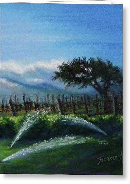 Grapevines Pastels Greeting Cards - Sprinklers at Pre Dawn Greeting Card by Denise Horne-Kaplan