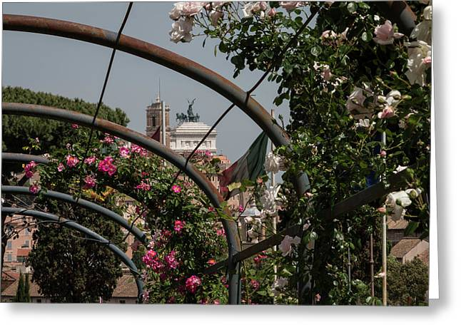 Sprintime In Rome, Vittoriale From Roses Garden 2 Greeting Card by Daniele Chiarottini