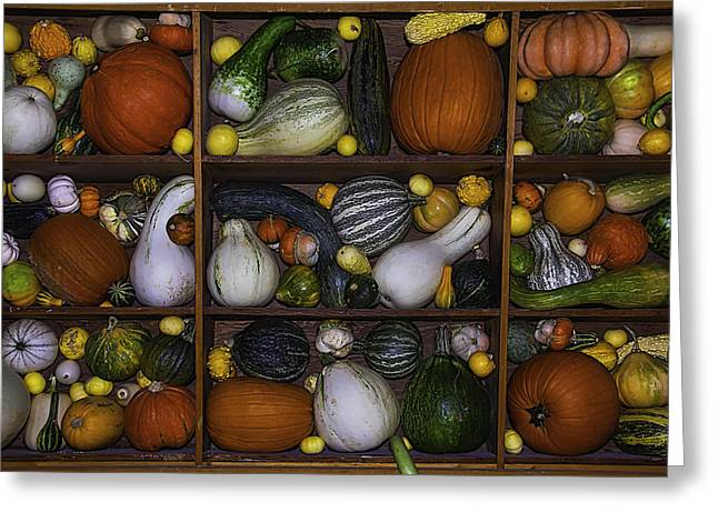 Compartment Greeting Cards - Squash And Gourds In Compartments Greeting Card by Garry Gay