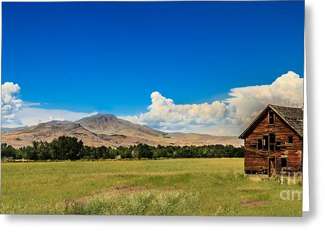 Haybale Greeting Cards - Squaw Butte And Little Butte Greeting Card by Robert Bales