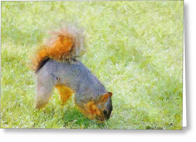 Squirrelly Greeting Card by Jeff Kolker