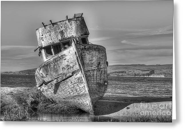 Marin County Greeting Cards - SS Point Reyes bw Greeting Card by Jerry Fornarotto