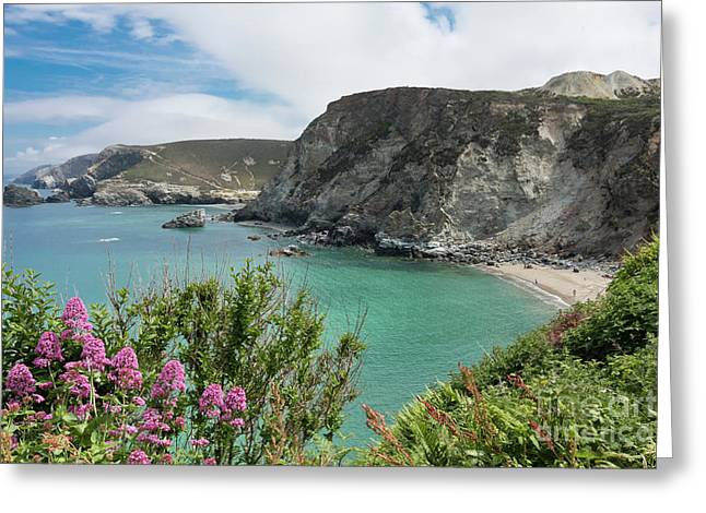 St Agnes Coast Greeting Card by Terri Waters