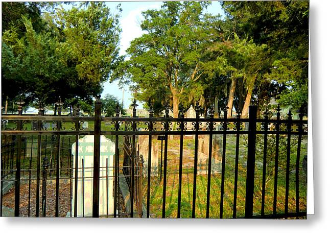 St. Augustine Cementary Greeting Card by Mindy Newman