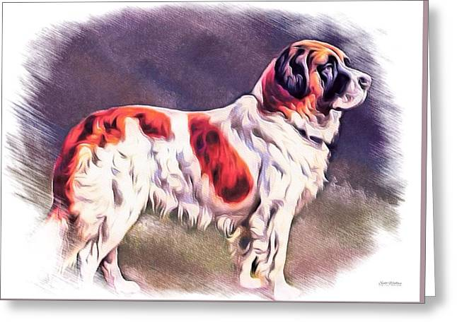 Dogs Digital Greeting Cards - St. Bernard Color Sketch Greeting Card by Scott Wallace