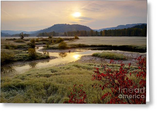 Reflections In River Greeting Cards - St. Joe River Valley Greeting Card by Idaho Scenic Images Linda Lantzy