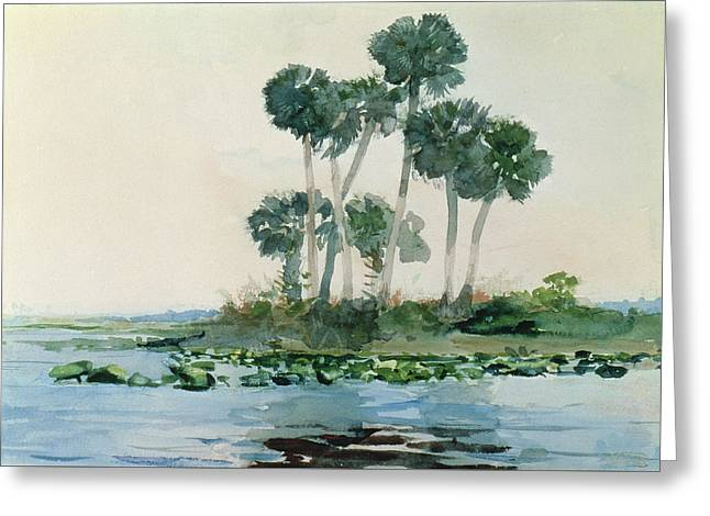 Desert Drawings Greeting Cards - St Johns River Florida Greeting Card by Winslow Homer