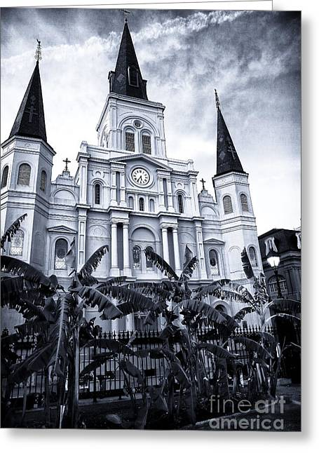 St. Louis Artist Greeting Cards - St. Louis Cathedral at Night Greeting Card by John Rizzuto