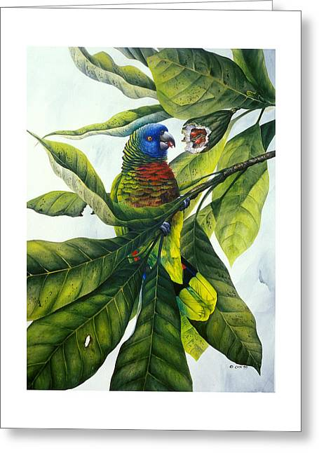 St. Lucia Parrot Greeting Cards - St. Lucia parrot and fruit Greeting Card by Christopher Cox