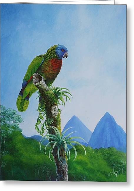 St. Lucia Parrot Greeting Cards - St. Lucia Parrot and Pitons Greeting Card by Christopher Cox