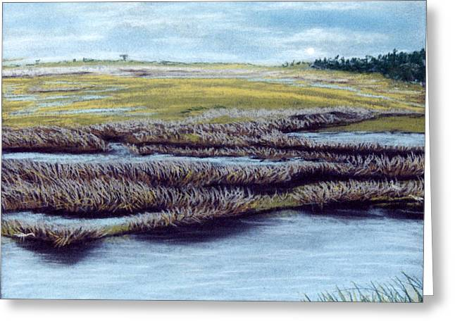 Blue Green Water Pastels Greeting Cards - St. Marks Marshland Greeting Card by Jan Amiss