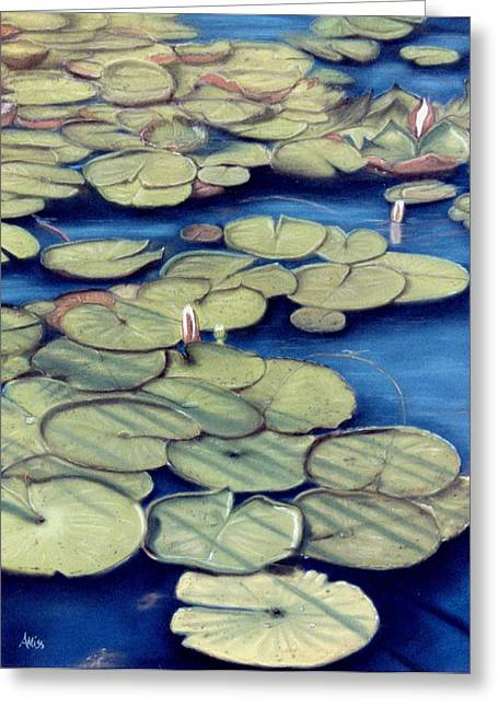 Spring Pastels Greeting Cards - St. Marks Waterlilies Greeting Card by Jan Amiss