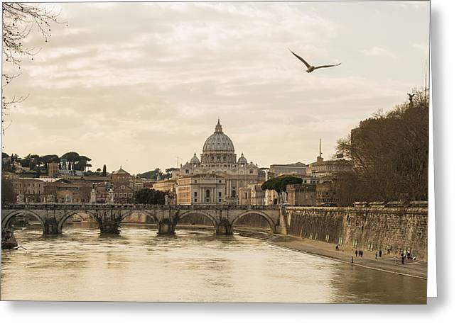Castle. Birds Greeting Cards - St. Peter S Basilica And River Tiber Greeting Card by Mats Silvan