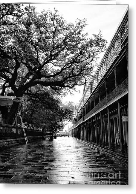 Peter Art Prints Posters Gallery Greeting Cards - St. Peter Street II Greeting Card by John Rizzuto