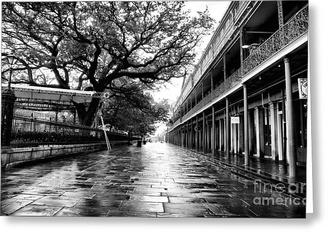 Peter Art Prints Posters Gallery Greeting Cards - St. Peter Street Greeting Card by John Rizzuto