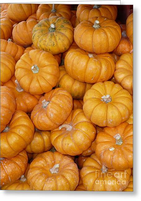 Mini Pumpkins Greeting Cards - Stacked Mini Pumpkins Greeting Card by Carol Groenen