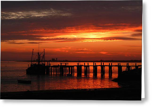 Chatham Greeting Cards - Stage Harbor Sunset Greeting Card by Heather MacKenzie