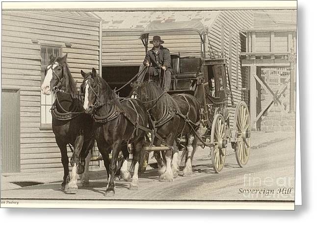 Sovereign Greeting Cards - Stagecoach Greeting Card by Jan Pudney