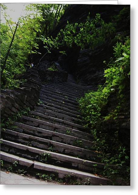 Shower Curtain Greeting Cards - Stairway to Watkins 2 Greeting Card by InTheSane DotCom