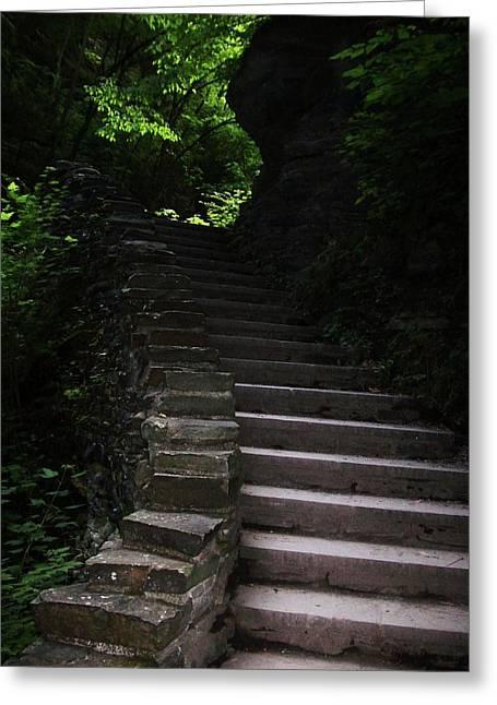 Shower Curtain Greeting Cards - Stairway Watkins Glen 1  Greeting Card by InTheSane DotCom