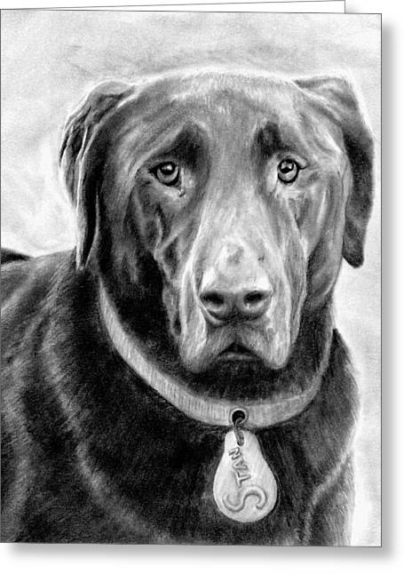 Man's Best Friend Drawings Greeting Cards - Stan Greeting Card by Ryan Jacobson