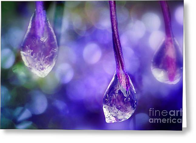 Frozen Water Greeting Cards - Stand Out And Be Seen Greeting Card by Michael Eingle