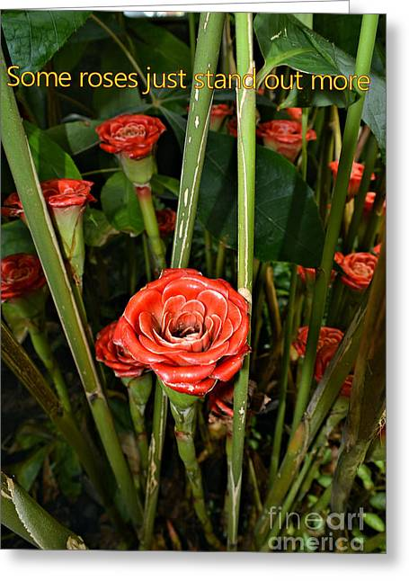 Botanical Tapestries - Textiles Greeting Cards - Stand Out Rose Greeting Card by Edna Weber