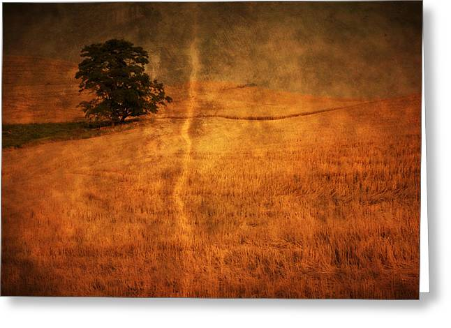 People Greeting Cards - Standing Alone Greeting Card by Eggers   Photography