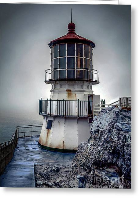 Marin County Greeting Cards - Standing Guard Greeting Card by Paul Gillham