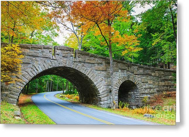 Carriage Road Greeting Cards - Stanley Brook Bridge in Acadia N.P Greeting Card by Henk Meijer Photography