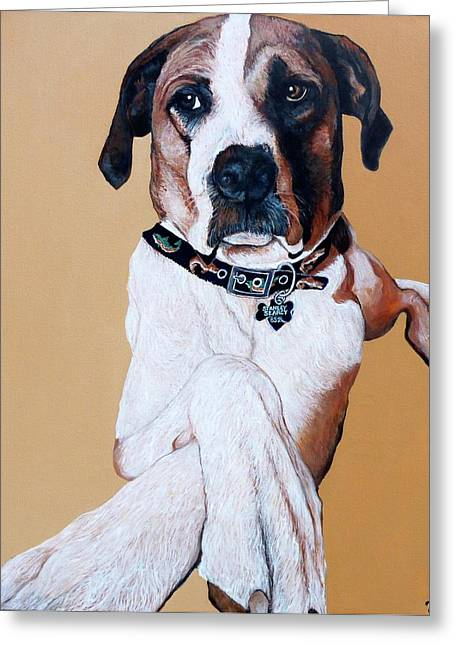Stanley Greeting Card by Tom Roderick