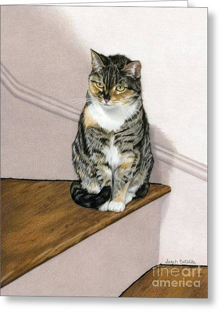 Wooden Stairs Greeting Cards - Stanzie Cat Greeting Card by Sarah Batalka