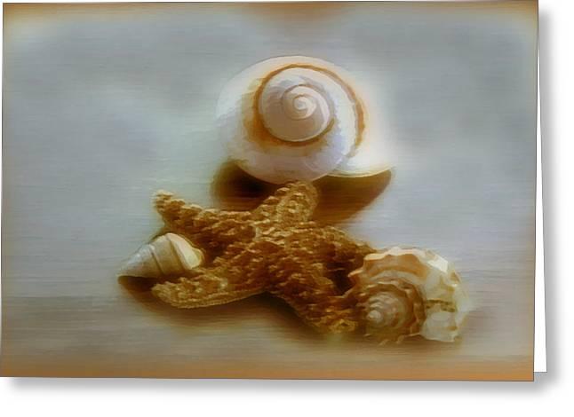Beach House Digital Greeting Cards - Star and Shells Greeting Card by Linda Sannuti