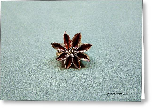 Colorful Jewelry Greeting Cards - Star Flower Greeting Card by Stan Mowatt
