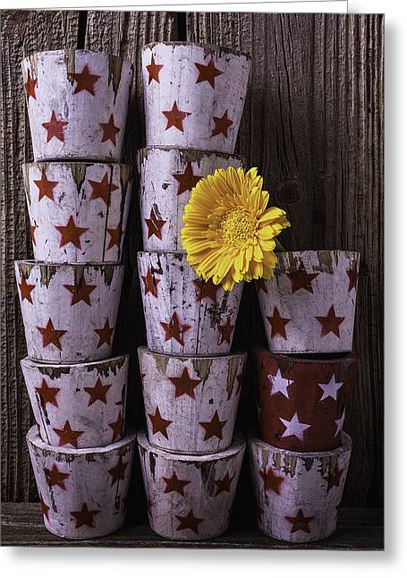 Planter Greeting Cards - Star Planter Cups Greeting Card by Garry Gay