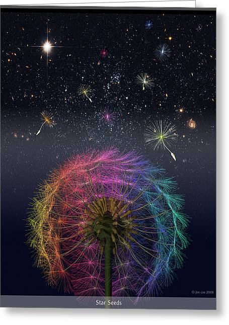 Jim Coe Greeting Cards - Star Seeds Greeting Card by Jim Coe