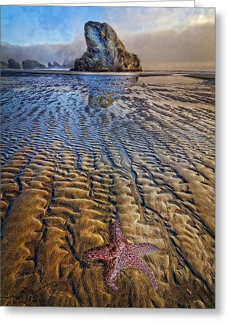 Foggy Ocean Greeting Cards - Starfish at Low Tide Greeting Card by Debra and Dave Vanderlaan