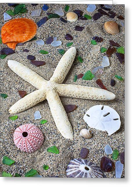 Starfish Beach Still Life Greeting Card by Garry Gay