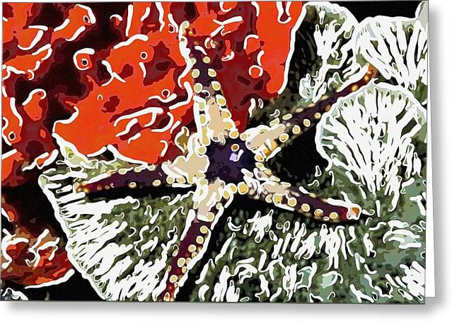 Starfish In Water Greeting Cards - Starfish in Coral reef 7 Greeting Card by Lanjee Chee