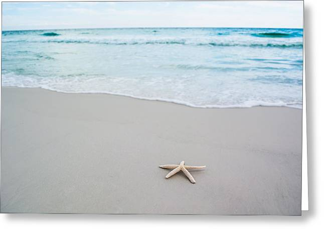 Starfish In Paradise Greeting Card by Shelby  Young