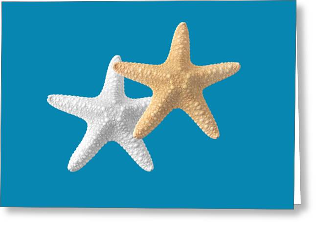 Seastar Greeting Cards - Starfish on Transparent Background Greeting Card by Gill Billington