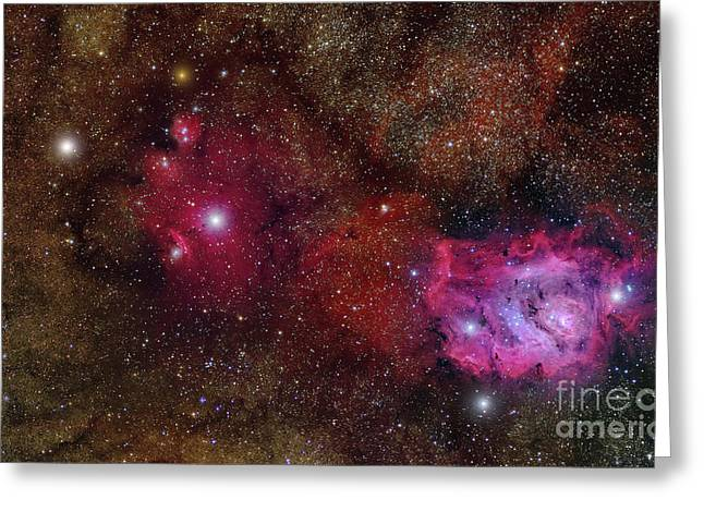 Starforming Greeting Cards - Starforming Region Ngc 6559 Greeting Card by Roberto Colombari