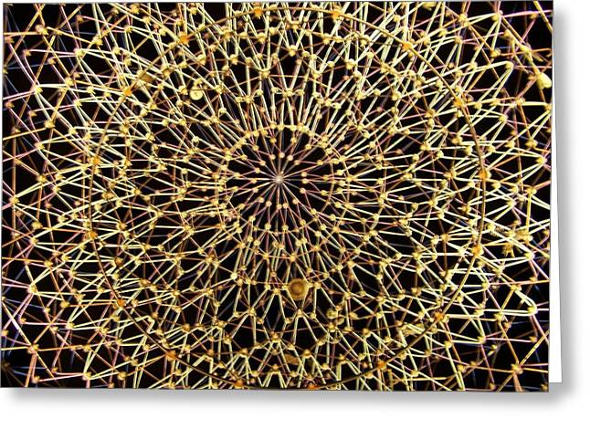 Starry Night Greeting Card by Jake Hartz