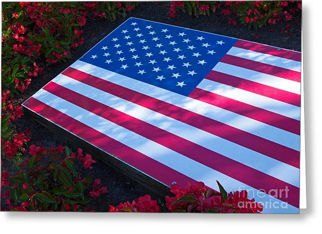 Greeting Cards - Stars, Stripes and Flowers Greeting Card by Ann Horn