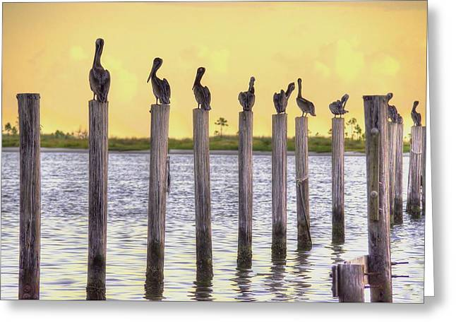 Recently Sold -  - Schooner Greeting Cards - Starting Lineup Greeting Card by Bo Lamey