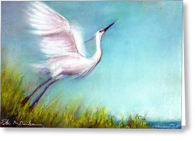 Seashore Pastels Greeting Cards - Startled Greeting Card by Peter R Davidson