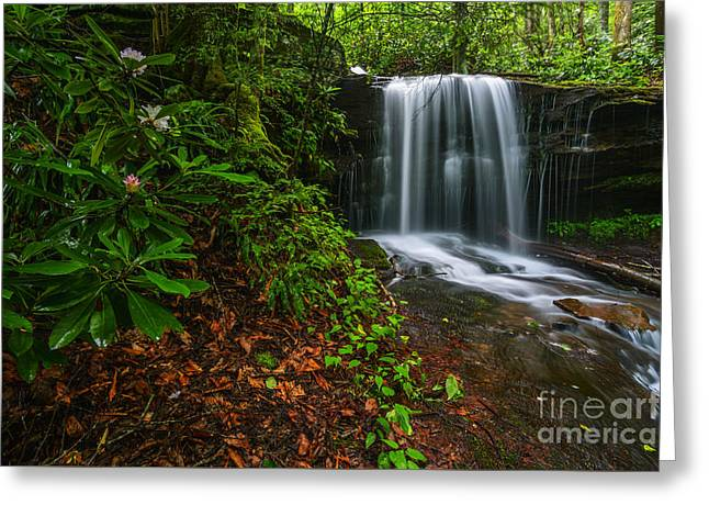 Rhododendron Maximum Greeting Cards - State Flower and Waterfall Greeting Card by Thomas R Fletcher